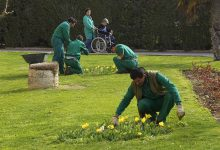 jardines (1)