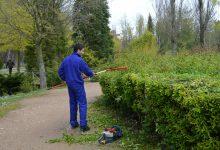 jardines (2)